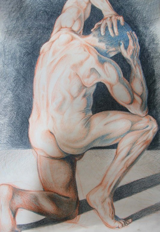 """""""Nude man"""", 16 hours, coloured pencil on A1 sized paper, 2014"""